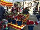Sant Jordi 2015 14-imp