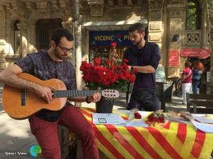 Sant Jordi 2015 37-imp
