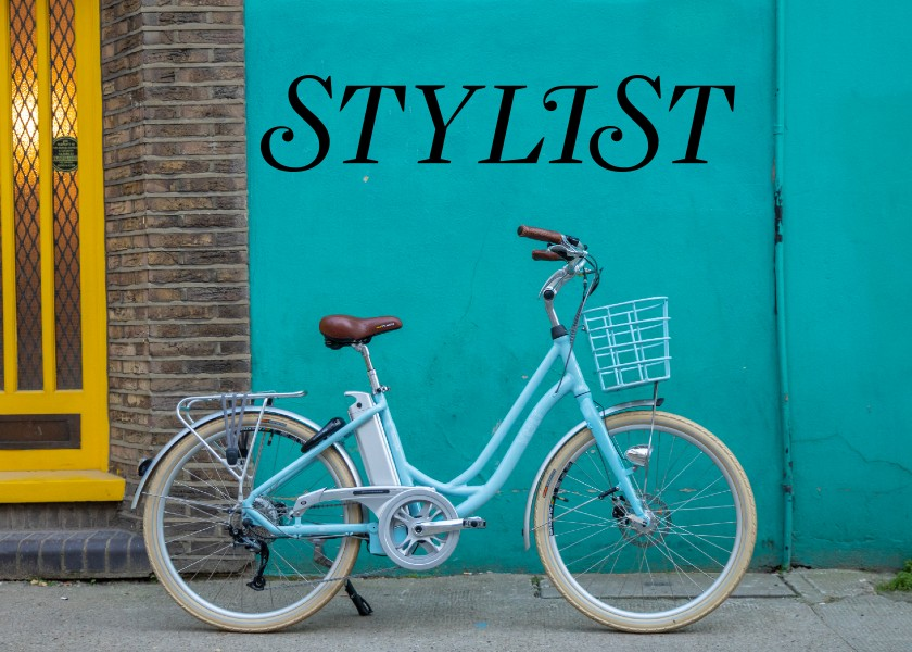 Stylist self-isolation shopping guide