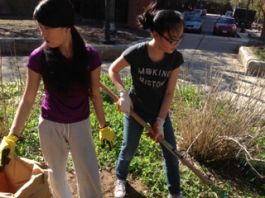 Members of Boston Cares' 2015 April Learn & Serve