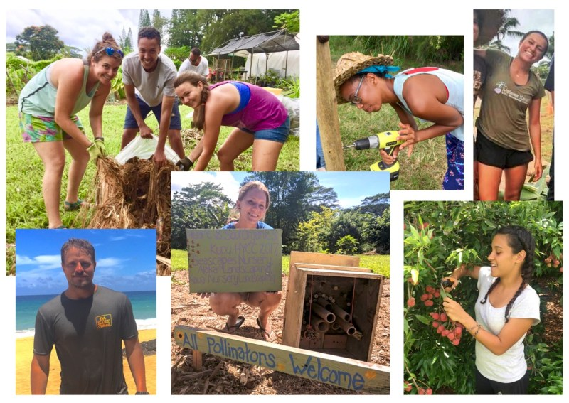 summer internships on kauai