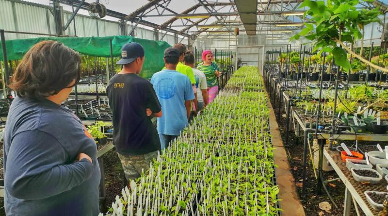 5 Awesome Kauai Community Service Projects - Volunteer Kauai