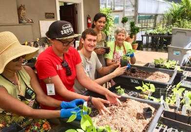 National Tropical Botanical Garden Fall Internship Program