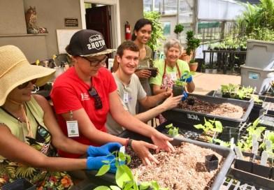 National Tropical Botanical Garden Fall Internship Program