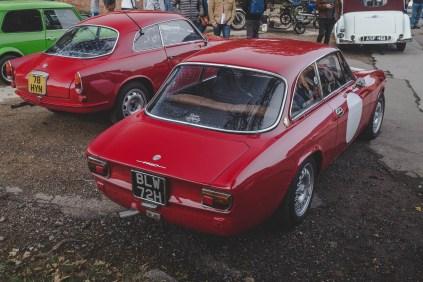 Little red Alfa's