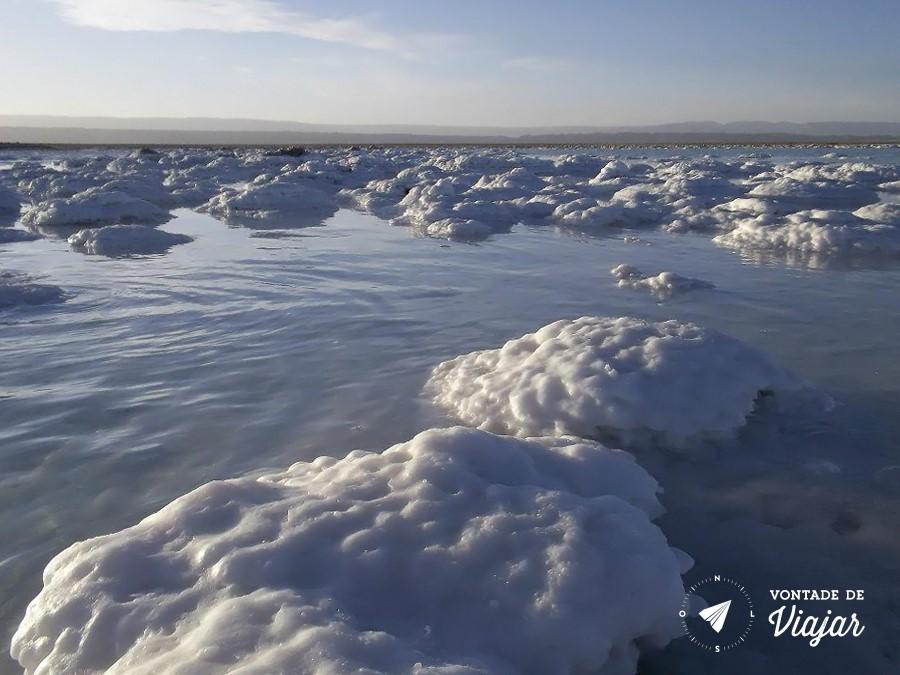 Deserto do Atacama - Laguna Tebinquinche cheia de sal - foto Camila Vasques