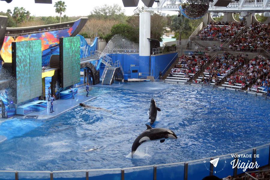 Disney - Show da Shamu no Sea World
