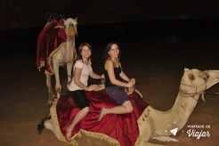 Dubai - Passeio de camelo (blog Vontade de Viajar)