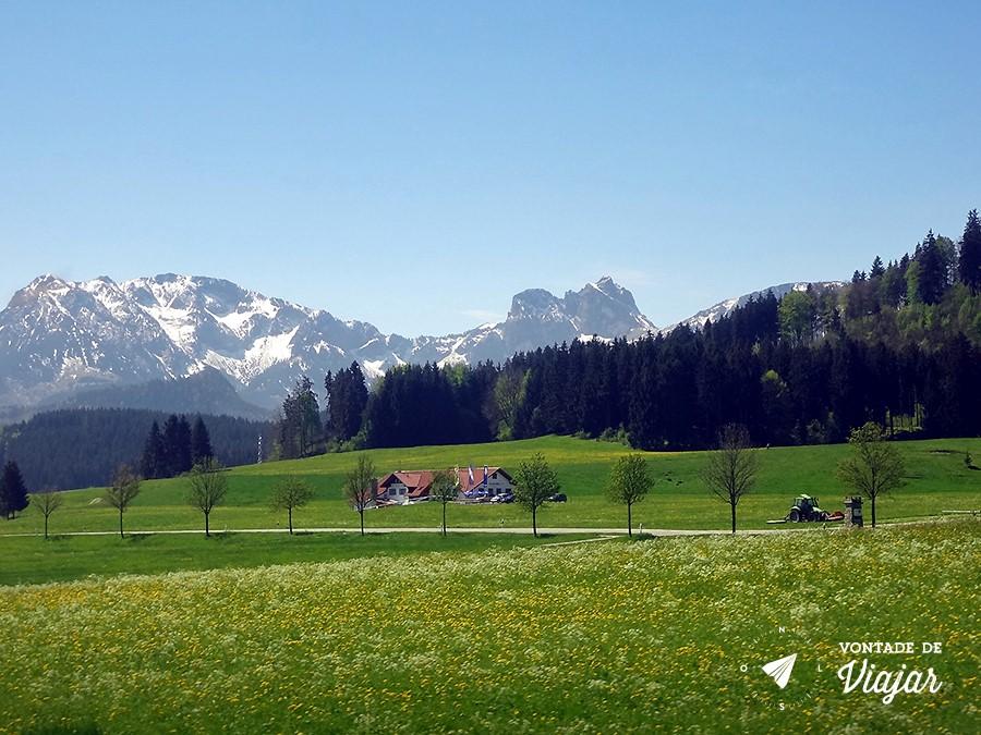 castelo-de-neuschwanstein-alpes-bavaros-vistos-do-trem-de-munique-para-fussen