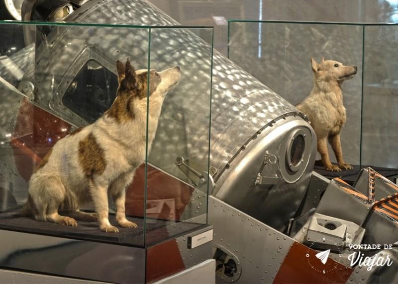 Museu da Cosmonautica - Um dos primeiros cachorros a ir para o espaco