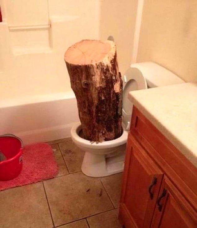 Неужели шутка действительно стоила того, чтобы засовывать в туалет бревно?