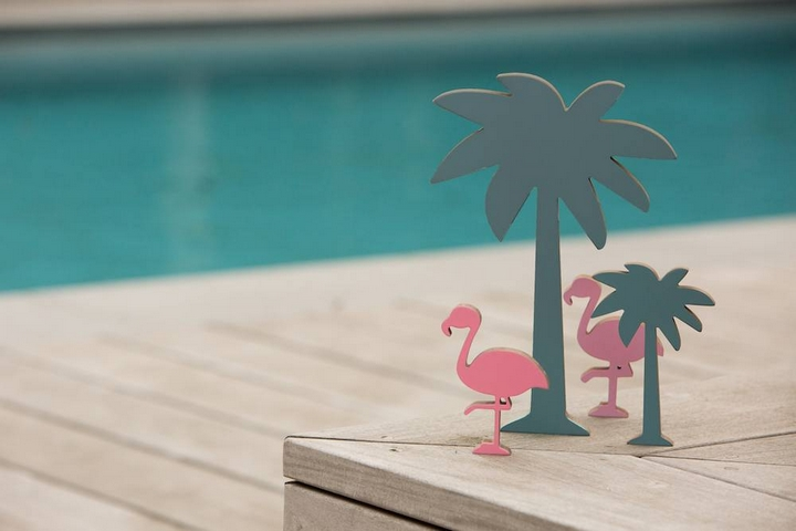 palmboom