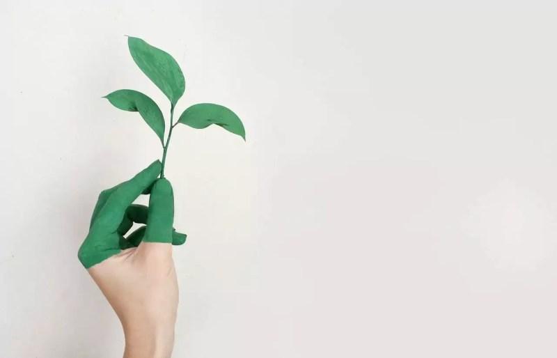 duurzaamheid marketing