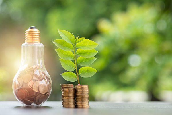 Brummen gaat energie besparen bij koop- en huurwoningen