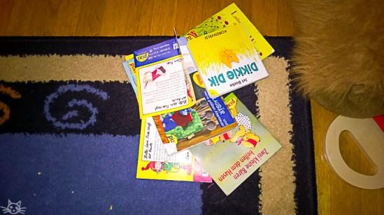 während das Frühlingskind einen langen Mittagsschlaf macht, bringt das Herbstkind ein Buch nach dem anderen