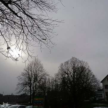 grau, grauer, Wintertag