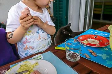 Die Katze will auch was, dem Herbstkind ist es suspekt