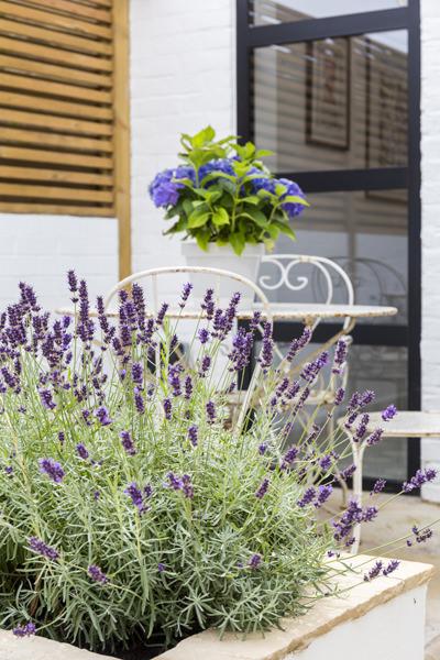 0401-kilburn-house-vorbild-architecture-garden-30