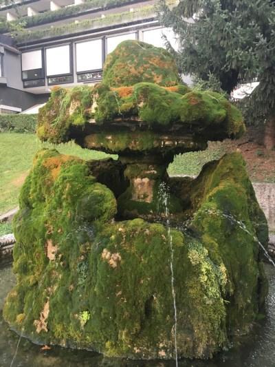Mosbegroet springvand i Bled