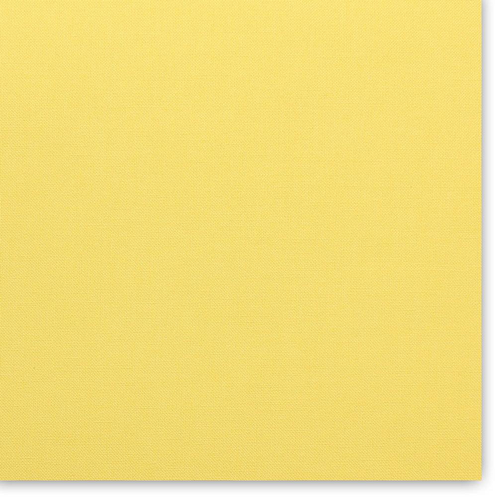 CHESTER-1016 (lemon) 1