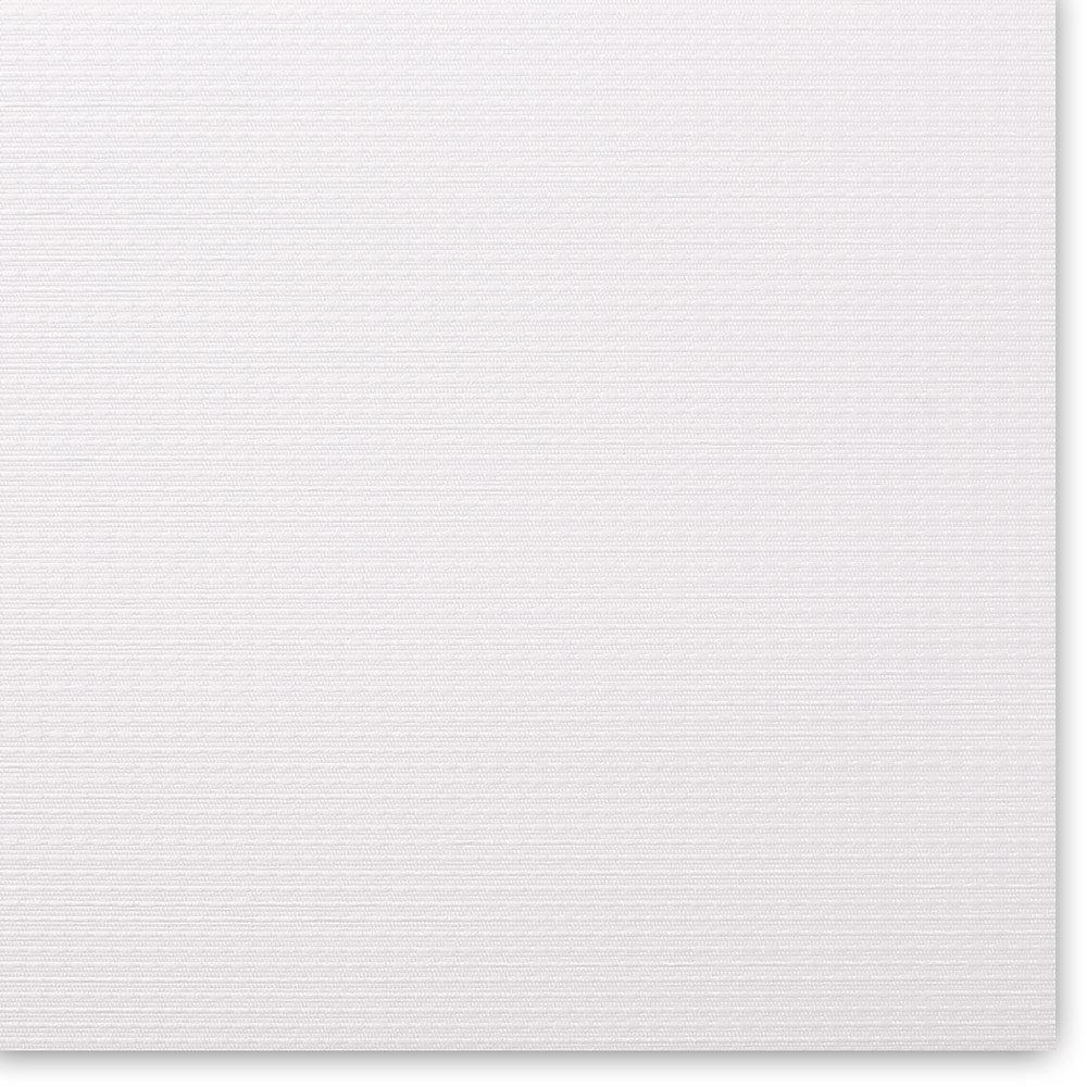 SCOTT-9016 (white) 1