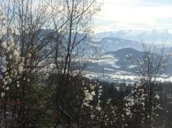 Blick ins boarische Land