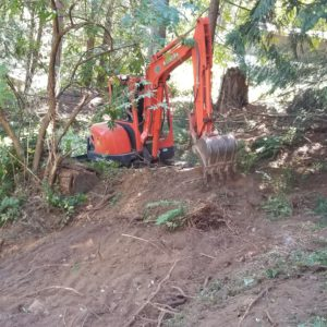 Preliminary site clearing for dispersal bed