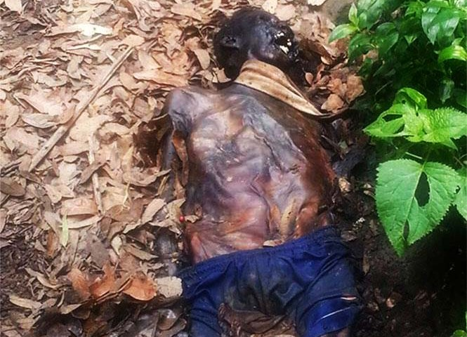 Hallan cuerpo momificado en Bosque de Chapultepec