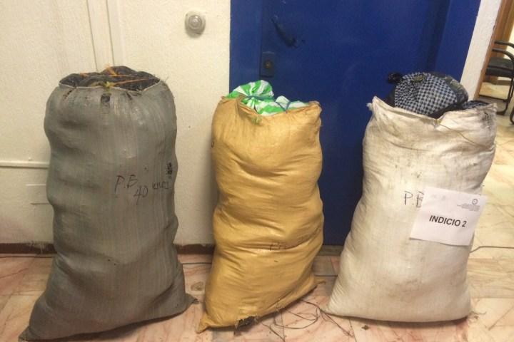 Decomisa PGR casi dos kilos de opio y más de 100 kilos de mariguana en Chiapas
