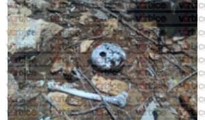 Localizan restos humanos en una ranchería de Cintalapa