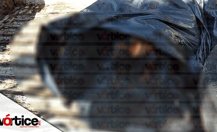 Queman vivos a tres presuntos delincuentes en Chiapilla