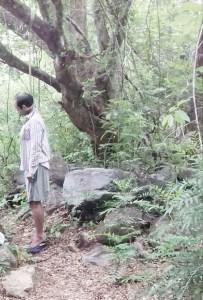 Se ahorcó en un árbol