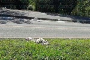 Hallan cadáver de una dama a orilla de la carretera en Huixtla