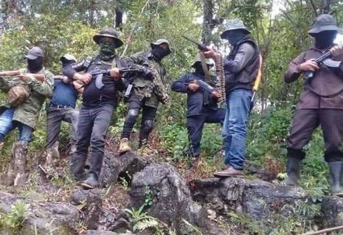 Surge grupo guerrillero denominado Ejército Revolucionario Indígena (ERI)
