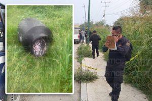 Localizan cadáver desmembrado dentro de un tinaco en Chiapa de Corzo