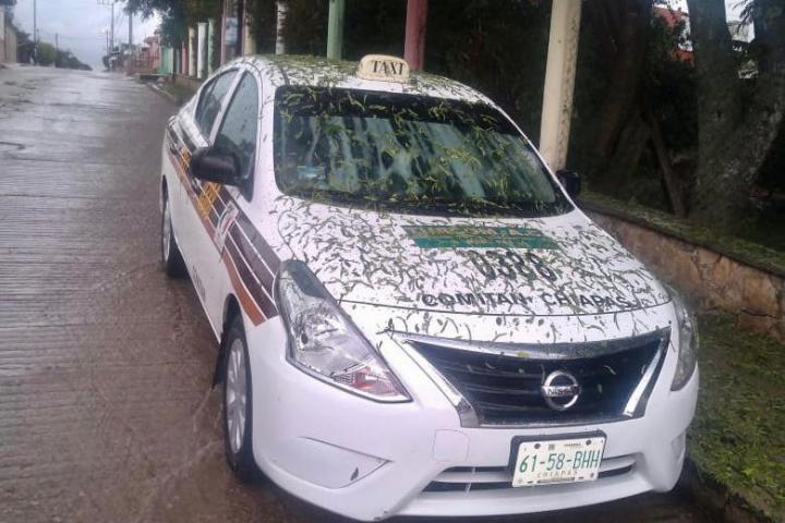 Recuperan vehículo robado en Benemérito de Las Américas