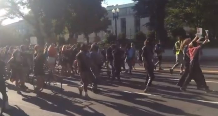 VIDEO: Black Lives Matter Demonstrators In DC Chant 'Israel, We Know You, You Murder Children, Too' 1