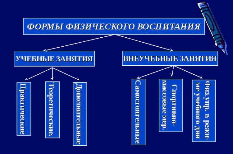 Схема и структура форм физического воспитания