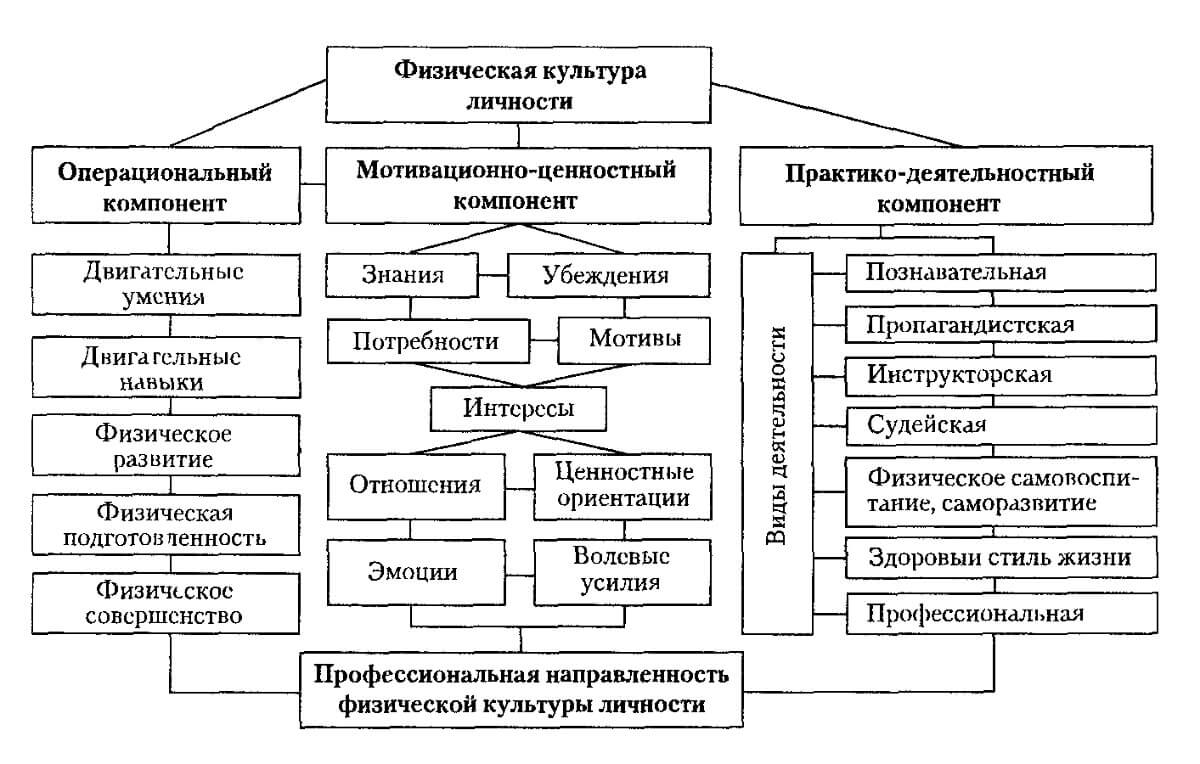 Схема воспитания личности в физическом воспитании