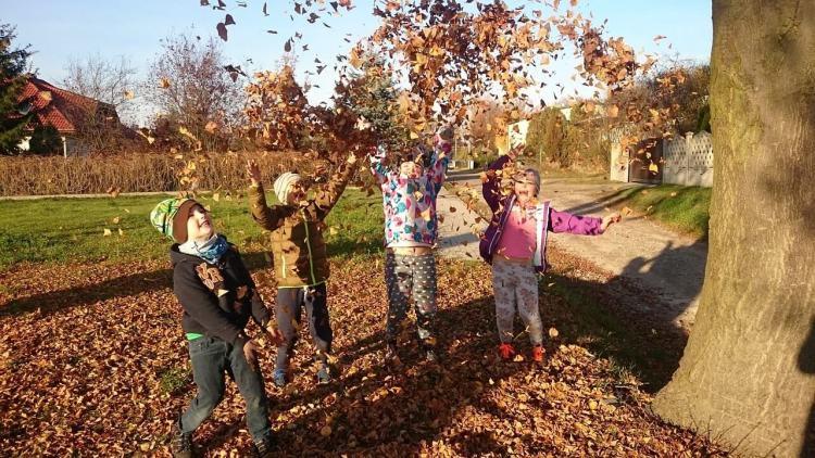 Дети играют опавшими листьями