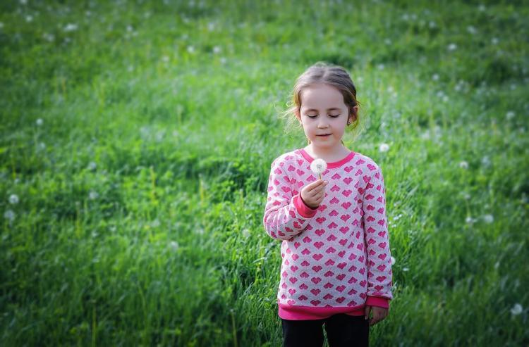 Девочка с одуванчиком. Занятие на природе