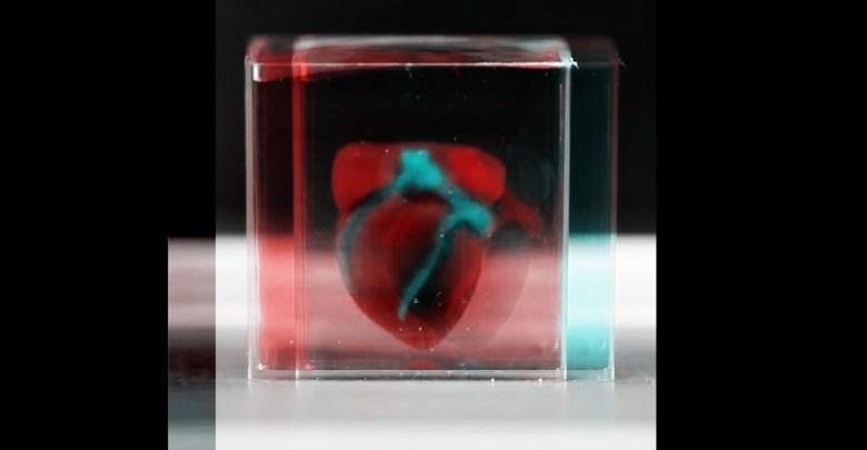 Vedci vytlacili Srdce