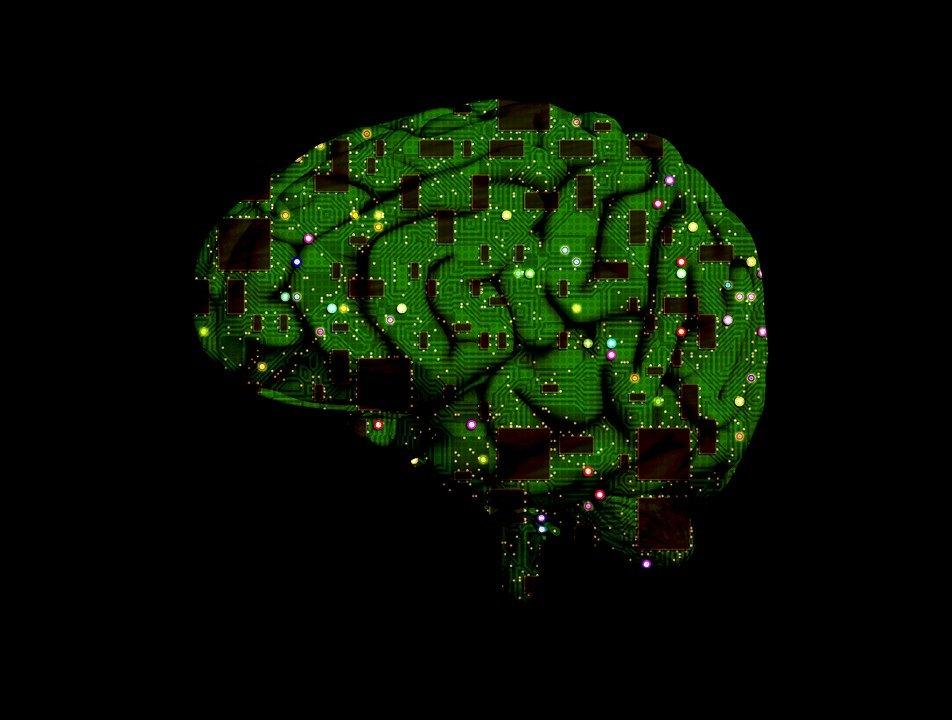 mozog brain-1845944_960_720