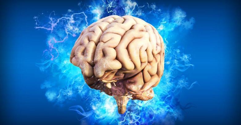 mozog brain-4314636_1920
