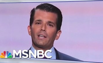 Here's Who Was At The June 2016 President Donald Trump Tower Meeting | Velshi & Ruhle | MSNBC
