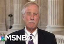Angus King: Senators Are 'Drummed Out Of The Core' When They Hold Diverse Party | MTP Daily | MSNBC