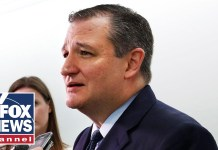 Cruz seeks Trump's help in tightening Texas Senate race