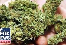 Canada's marijuana market now largest in the world