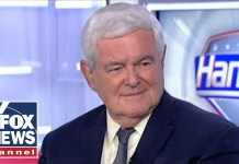 Gingrich: Midterm election is about 'two Americas'