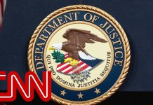 Russian charged with attempted election interference